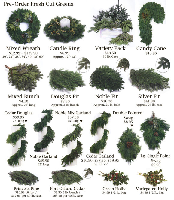 Fresh Christmas Wreaths Wholesale